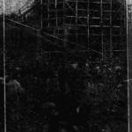 圖片出處:《臺灣日日新報》(1920-12-02)